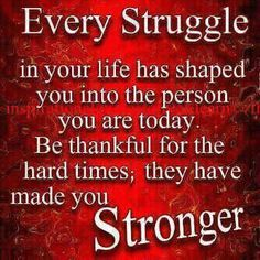 your life   Every Struggle In Your Life Has