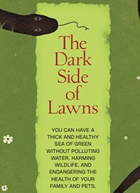 The Dark Side of Lawns: Learn how to maintain a safe, healthy, chemical-free lawn.   Free PDF download from Organic Gardening