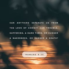 Romans Can anything separate us from Christ's love? Can trouble or problems or persecution separate us from his love? If we have no food or clothes or face danger or even death, will that separate us from hi Scripture Quotes, Bible Scriptures, Faith Quotes, Amplified Bible, Daily Bible, Daily Word, Daily Devotional, Jesus Freak, Verse Of The Day