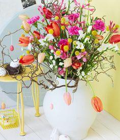 tulpen-nelken