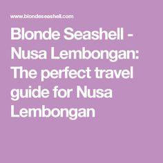 Blonde Seashell - Nusa Lembongan: The perfect travel guide for Nusa Lembongan