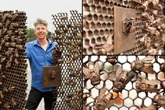 Christopher Russell and his bronze bee gates at the Sunset Park subway station in Brooklyn. (NYTimes.com/© Robert Wright for the New York Times; via @Nezka Pfeifer)