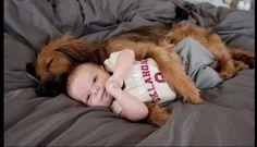 #dogs #dogoftheday #ilovemydog #puppy #lovedogs #servicedog #petlovers #doglovers #dog #puppylover #pets #doglover #dogsofinstagram #instadog #ilovemydog #instagramdogs #adorable #instagood #dogsofig #doglovers #dogsofinsta #dogslife #rescuedog #adoptdontshop #livejoyphotography #newborn   #babymilestone