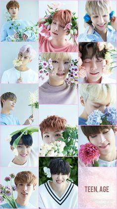 #SEVENTEEN #COLLAGE Seventeen Album, Seventeen Leader, Carat Seventeen, Jeonghan Seventeen, Woozi, Wonwoo, Choi Hansol, Joshua Hong, Seventeen Wallpapers