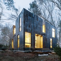 Un professeur d'université a souhaité installer sa maison au milieu des grands arbres d'un quartier résidentiel de la banlieue de Lexington aux États-Unis. L'architecture conçue par Merge Architects s'inspire du paysage, cherche à s'y fondre et ...