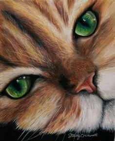 Cat Quilt, Colored Pencils, Quilts, Cute, Animals, Sweet, Backgrounds, Gatos, Drawing Drawing