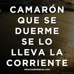 Proverbs and Poetry Mexican Phrases, Mexican Quotes, Spanish Phrases, Spanish Quotes, Sign Quotes, Words Quotes, Wise Words, Funny Quotes, Sayings