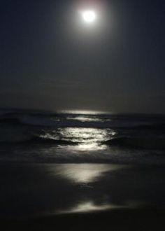 The tides are highest, for example, at the time of the new and full moon when lunar gravity pulls water up.  At this same time, the moon also causes moisture to rise in the earth. More tips @ themicrogardener.com