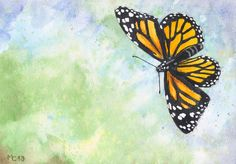 Original watercolor of a black and orange Monarch butterfly (unframed) - by Savousepate