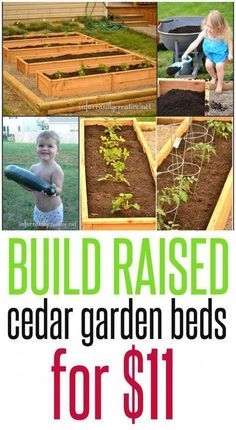 raised garden these building plans to make a raised garden bed on the cheap using cedar fence posts! Cedar Garden, Lawn And Garden, Garden Paths, Cedar Fence, Cedar Wood, Rooftop Garden, Cheap Raised Garden Beds, Building A Raised Garden, Raised Beds