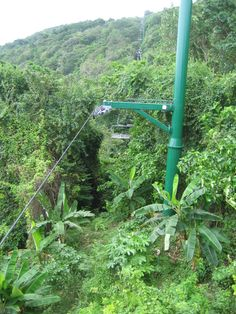 Zipline at Mystic Mountain in Ocho Rios, Jamaica