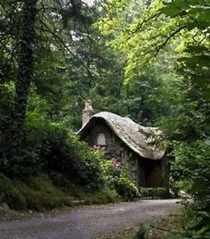 curvy roofed house in the woods