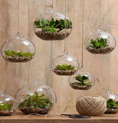 jardines de cristal
