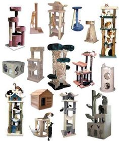 Cat Furniture, Cat Trees, Cat Houses, Cat Condos, Cat Perches and Scratching Posts.