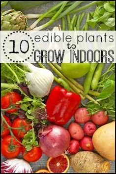 10 Edible Plants to Grow Indoors - Tipsaholic, #edibleplants, #indoorgarden, #urbangarden