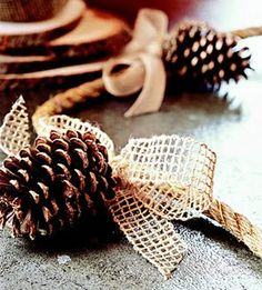 Pretty Natural Garland - Brush pinecones with gold paint and glitter; let dry. Attach pinecones to hemp rope using heavy-gauge gold-tone wire. Tie bows of neutral ribbon over the wires. Drape the garland along your tabletop as a natural centerpiece.