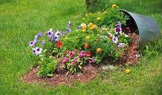 Use your Broken Pots in the Garden : spilled bucket of flowers
