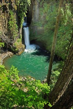 Toketee Falls In Central Oregon..