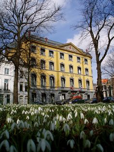 Spring in The Hague, the Netherlands