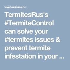 TermitesRus's can solve your issues & prevent termite infestation in your home. Contact us today & exterminate those termites. Termite Control, Pest Control Services, Brisbane