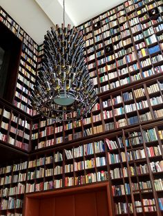 Boutique hotel in Albisguetli, Zurich, Switzerland: Antique books! beer-themed chandeliers! the hotel library!