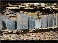 Everest tablets