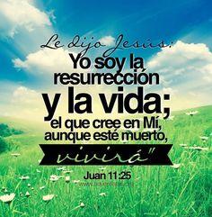 Juan 11:25 Le dijo Jesús: Yo soy la resurrección y la vida; el que cree en mí, aunque esté muerto, vivirá.