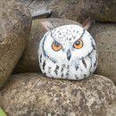 Auf Fluss-Stein gemalte Eule (Höhe 11,5 cm ,Breite Unten 12 cm, oben 10 cm). Zum Malen habe ich Acrylfarben der Marke Patiopaint in weiß , Elfenbein, braun , orange und schwarz verwendet, diese...