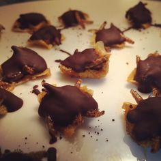 #chocolate #piña y #larvas de #tenebrio con un poco de #café - #nutricion y #endorfinas