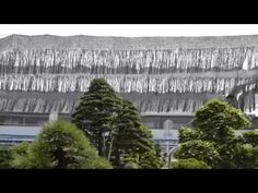 WORLD OF NATURE AND LIFE: AMAZING   BONSAI   TREES
