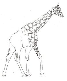 How to draw a giraffe.
