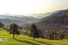 Just a landscape from Slovenia by jonasgabor  forest green landscape light mountain mountains sky slovenia summer sun sunrise travel tree trees Ju