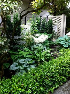 Traditional Perennial - Angus Lands - traditional - landscape - vancouver - Glenna Partridge Garden Design