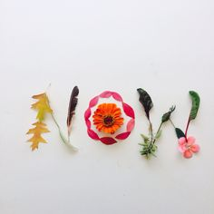 <{NOW}>  there is only now by Holland Seydel #botanicalfont #flowerfont #flowerpower #flowerletters