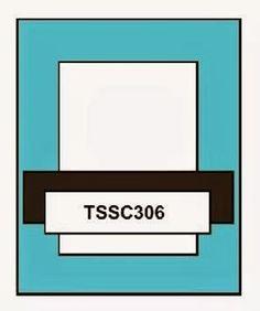 Techno Stamper: Monday Lunchtime Sketch Challenge 306 (TSSC306)