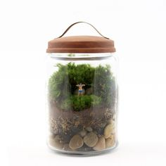 NSFW, but totally appropriate for those with boobie loving friends... don't feel embarrassed take a closer peek at this Boobies Terrarium