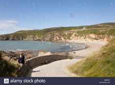 Stock Photo - View to a quiet beach with with people in summer in Church Bay (Porth Swtan), Isle of Anglesey, North Wales, UK Britain Wales Uk, North Wales, Anglesey Wales, Britain, Vectors, Coastal, Scenery, Illustrations, Stock Photos