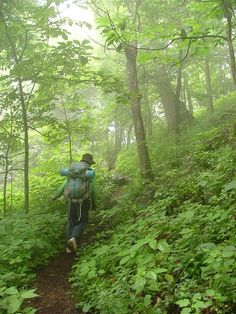 The Appalachian Trail is approximately 2200 miles long and spans the terrain of the Appalachian Mountains.  It runs from Maine to Georgia, mostly through wilderness, and passing through some small towns.....I wish I had the fortitude to do this.