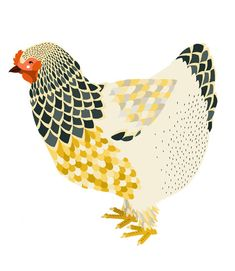 Chicken - Art and illustration by Amy Blackwell Chicken Illustration, Bird Illustration, Illustrations, Gallus Gallus Domesticus, Chicken Art, Hen Chicken, Funny Chicken, Chicken Painting, Foto Portrait