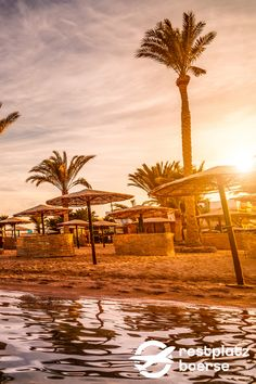 Nehmen sie sich einen Abend zeit und genießen sie einfach einmal den wunderschönen Sonnenuntergang am Strand in Ägypten. #Urlaub #Tipps #Urlaub #Reisen #sunnset Mercedes Benz, Vacation Travel, Beautiful Sunset, Tours, Travel Advice, Simple, Nice Asses
