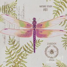 Botanical Dragonfly-JP3422 by Jean Plout