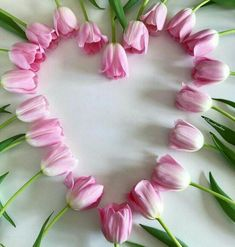Light pink Tulips in a heart shape surrounded by green foliage on a white background. Heart In Nature, Heart Art, I Love Heart, Happy Heart, Pretty In Pink, Beautiful Flowers, Frühling Wallpaper, Heart Images, Pink Tulips