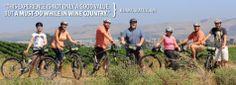 Sonoma Valley Bike Tours