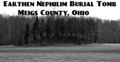 Giant Human Skeletons: Giant Human Skeleton Unvcovered in Meigs County, Ohio Burial Mound