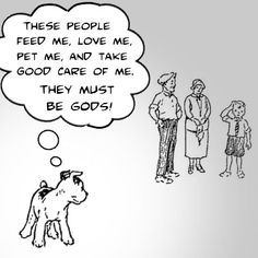 The way a Dog thinks - this is why Dogs are the best!