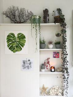 Urban Jungle Bloggers: Plantshelfie 2 by @Ceramicmagpie