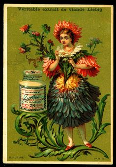 "https://flic.kr/p/8zwtV1 | Liebig S133 - Flower Girls 1883 | Liebig Meat Extract ""Flower Girls"" French issue, 1883"