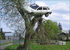 dude...where's my car