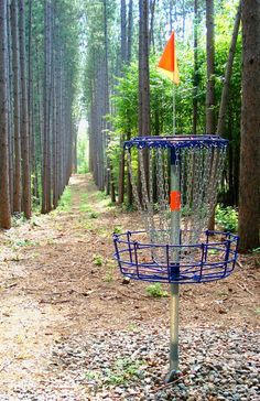 Want to play disc golf? Get started at these scenic sites