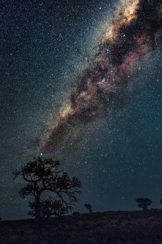 """Stargazing @Campsite by Pietro Olivetta """